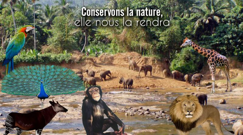 DCN Direction de la Conservation de la Nature