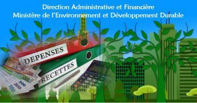 Direction Administrative Et Financière (DAF)