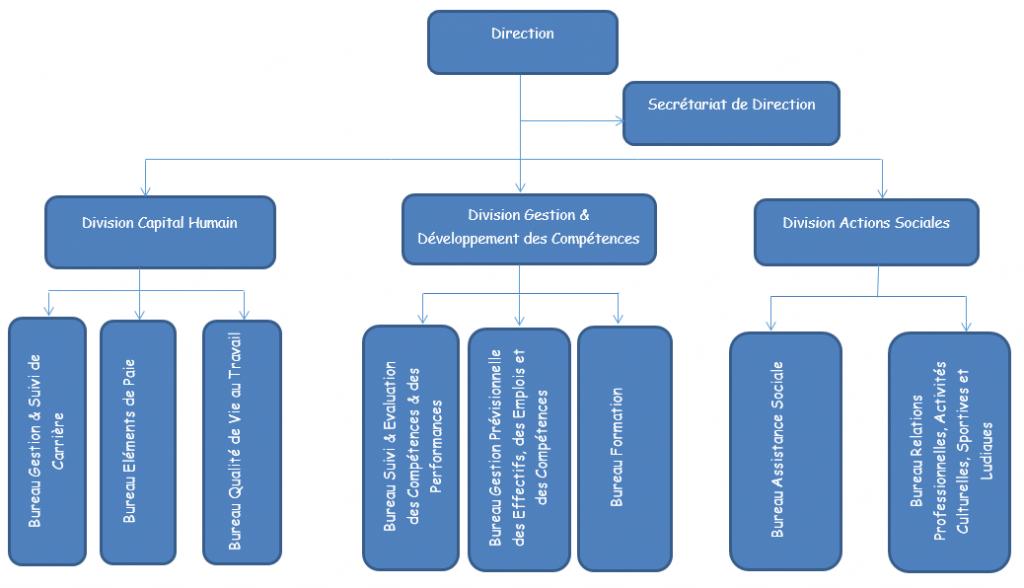 ORGANIGRAMME DE LA DIRECTION RESSOURCES HUMAINES