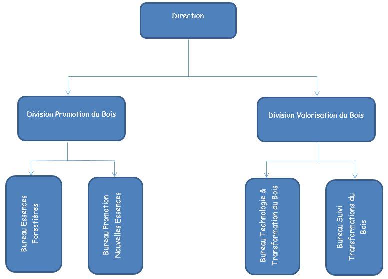 ORGANIGRAMME DE LA DIRECTION PROMOTION ET VALORISATION DU BOIS - DPVB