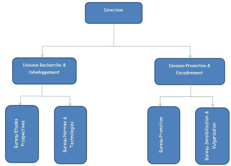 ORGANIGRAMME DE LA DIRECTION TECHNOLOGIES DE L'ENERGIE BOIS - DTEB