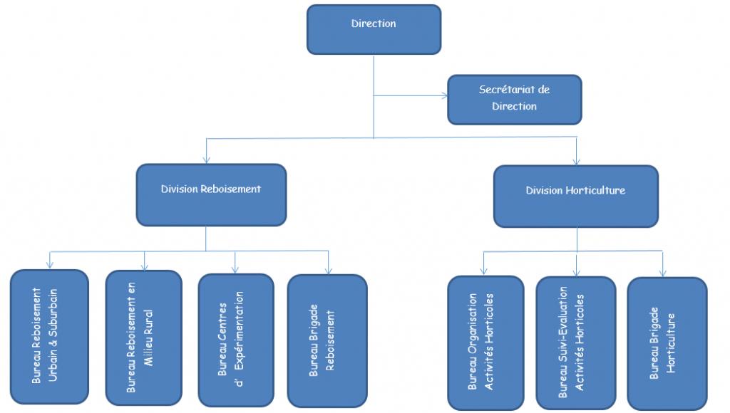 ORGANIGRAMME DE LA DIRECTION REBOISEMENT ET HORTICULTURE - DHR