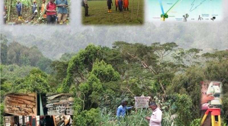 Direction Cadastre Forestier (DCF)