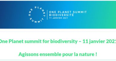 One-planet-summit-for-biodiversity-11-janvier-2021-Agissons-ensemble-pour-la-nature.jpg