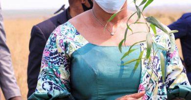 RESTAURATION DES FORETS Projet de Un Milliard d'arbres à l'horizon 2023 Eve BAZAIBA s''active