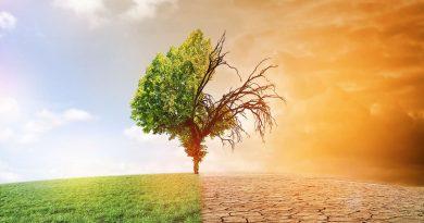RD Congo, « pays-solution » au problème du réchauffement climatique